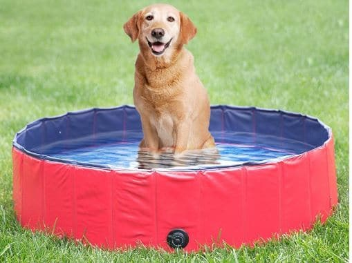 NACOCO Foldable PVC Dog Water Pool