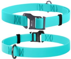 Waudog Waterproof Dog Collar, by CollarDirect