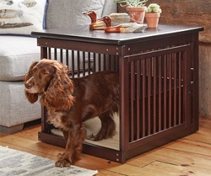 Crate for Cavalier King Charles Spaniel
