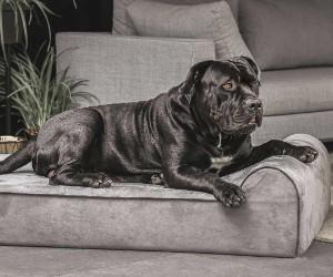 Big Barker Dog Bed, Headrest Edition